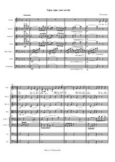 Гори, гори, моя звезда: Для камерного оркестра by Пётр Булахов