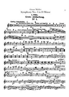 Симфония No.3 ре минор: Партии флейт by Густав Малер
