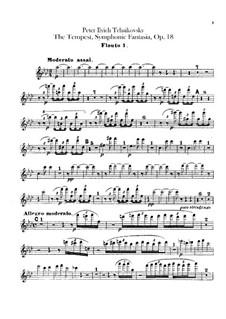 Буря, TH 44 Op.18: Партии флейт by Петр Чайковский