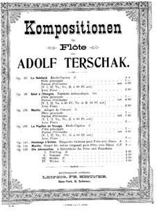 Die Jahreszeiten, Op.143: Winter für Flöte und Klavier by Адольф Тершак