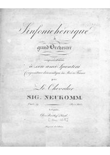Симфония ре мажор, Op.19: Симфония ре мажор by Сигизмунд фон Нойкомм