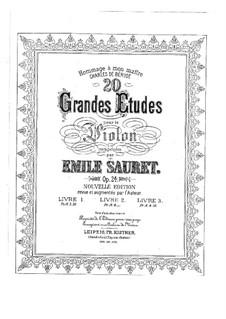 Двадцать больших этюдов для скрипки, Op.24: Двадцать больших этюдов для скрипки by Эмиль Соре