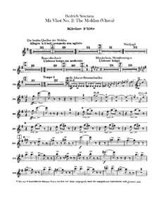 Влтава, T.111: Партии флейт by Бедржих Сметана