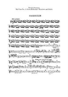 В лесах и лугах Богемии, T.114: Партии кларнетов by Бедржих Сметана