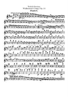 Лагерь Валленштейна, B.111 T.79 Op.14: Партии флейт by Бедржих Сметана