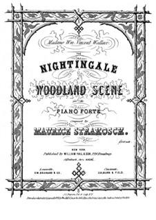 The Nightingale: The Nightingale by Морис Стракош