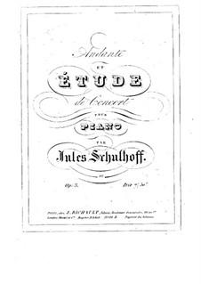 Анданте и концертный этюд, Op.3: Анданте и концертный этюд by Юлиус Шульгоф