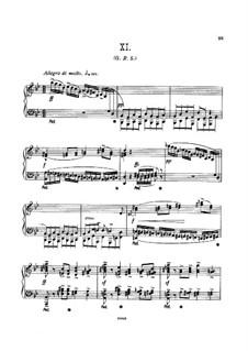 Фрагменты: Вариации No.11-13, для фортепиано by Эдуард Элгар