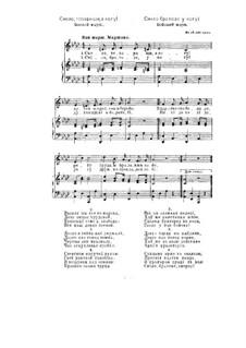 Смело, товарищи в ногу: Для голоса и фортепиано by Leonid Petrovich Radin