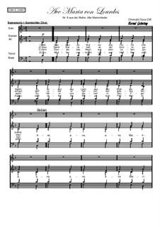 Alte Marienlieder Nr.8, Ave Maria von Lourdes, Op.238: Alte Marienlieder Nr.8, Ave Maria von Lourdes by folklore