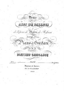 Арии на темы из оперы 'Моисей в Египте' Россини, Op.28: No.1 – Партии by Маттео Каркасси