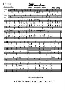 Solomesse, Op.7: Nummer 4: Sanctus by Bernd Gehring