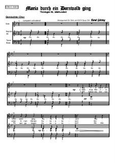 Weihnachtliches. Maria durch ein Dornwald ging (mit Knabensolo), Op.334: Weihnachtliches. Maria durch ein Dornwald ging (mit Knabensolo) by folklore