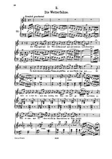 No.2 Флюгер: Клавир с вокальной партией by Франц Шуберт