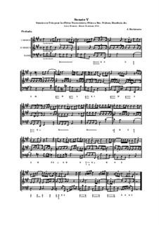 Sonates en trio pour les flûtes traversières et a bec, violon, hautbois et basso continuo, Op.3: Соната No.5 by Жак Оттетер