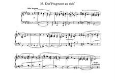 Das 'Fragment an sich': Das 'Fragment an sich' by Фридрих Ницше