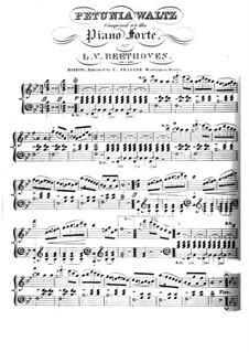 Petunia Waltz: Petunia Waltz by Людвиг ван Бетховен