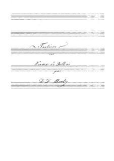 Фантазия на тему из оперы 'Норма' Беллини: Фантазия на тему из оперы 'Норма' Беллини by Иоганн Каспар Мерц