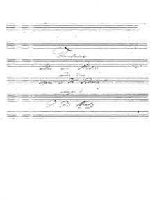 Фантазия на тему из оперы 'Пират' Беллини: Фантазия на тему из оперы 'Пират' Беллини by Иоганн Каспар Мерц