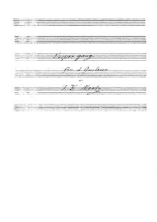 Vespergang für zwei Gitarren: Stimmen by Иоганн Каспар Мерц
