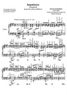 No.7 Нетерпение: Клавир by Франц Шуберт