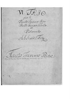 Шесть трио для двух флейт и виолончели: Полный сборник – партии by Антонин Фильц