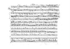 Дуэт для скрипки и альта, BI 33: Дуэт для скрипки и альта by Алессандро Ролла