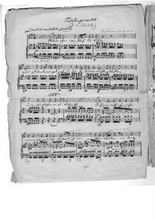 No.12 Весенняя ночь: Клавир с вокальной партией (Манускрипт) by Роберт Шуман