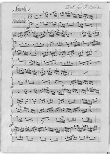 Одиннадцать сонат для флейты и бассо континуо: Одиннадцать сонат для флейты и бассо континуо by Иоганн Бенда