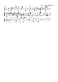 Тема для гитары: Тема для гитары by Иоганн Каспар Мерц