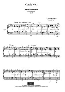 Choral in e major for organ of the Holy souls, CS110 No.1: Choral in e major for organ of the Holy souls by Santino Cara