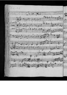 Шесть струнных трио, Op.4: Трио No.6, G.88 by Луиджи Боккерини