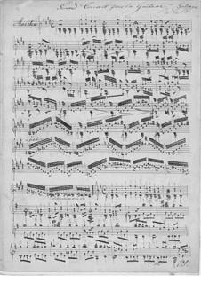 Большой концерт для гитары: Большой концерт для гитары by Мауро Джулиани