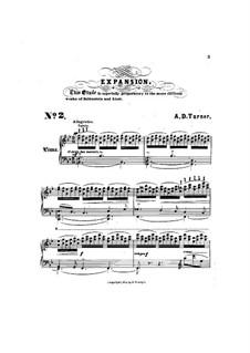 Шесть концертных этюдов: No.2 Expansion by Альфред Дадли Тёрнер