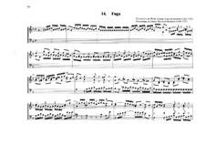 Фуга для органа No.14 соль минор: Фуга для органа No.14 соль минор by Johann Heinrich Buttstett