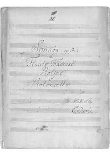 Трио соната си-бемоль мажор: Трио соната си-бемоль мажор by Wilhelm Gottfried Enderle