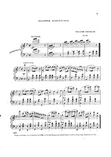 Bloomer Schottisch, Op.28: Bloomer Schottisch by William Dressler