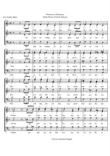 Winterreise, Op.23: Nr.4 Erstarrung by Werner Schneider-Wiegand