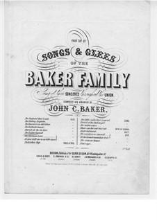 The Farewell: The Farewell by John C. Baker