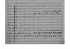 Симфония до минор, EG 119: Часть IV by Эдвард Григ