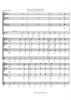 Winterreise, Op.23: Nr.25 Der stürmische Morgen by Werner Schneider-Wiegand