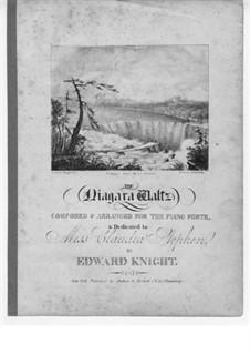 The Niagara Waltz: The Niagara Waltz by Edward Knight