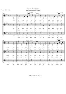 Winterreise, Op.23: Nr.21 Das Wirtshaus by Werner Schneider-Wiegand