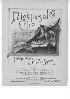 Nightingale's Echo Song: Nightingale's Echo Song by J. Albert Snow