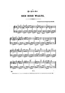 Red Bird Waltz: Red Bird Waltz by Julius Becht