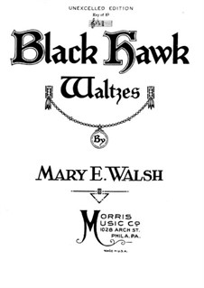 Black Hawk Waltz: Black Hawk Waltz by Mary E. Walsh