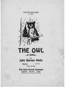 The Owl: The Owl by Jack Wells