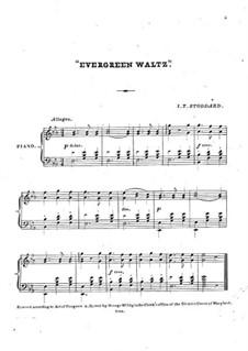 Evergreen Waltz: Evergreen Waltz by Isaiah T. Stoddard