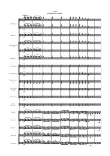 Симфония No.1 до минор, WAB 101: Часть III by Антон Брукнер