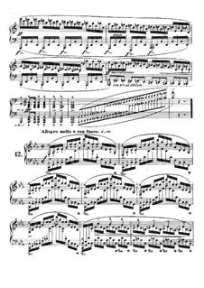 No.12 до минор: Для фортепиано by Фредерик Шопен